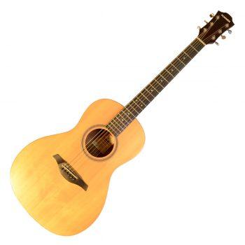 Foto: Hohner Essential Pro EP1-SP - Akustikgitarren - Ansicht Front