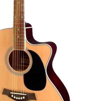 Foto: T. Burton Riverside Akustikgitarre Jumboform - Korpus