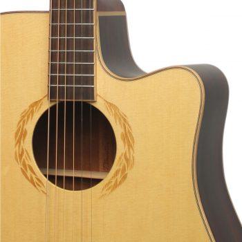 Foto: T.Burton SE2006 WCE - Western/Akustikgitarren mit Tonabnehmer - Ansicht Front Detail