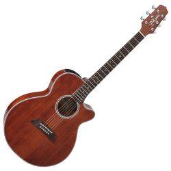 Foto: Takamine EF-261 SAN FX-Artist Legacy - Zedern/Mahagoni Akustikgitarre - Ansicht Front