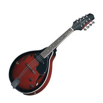 Foto: Mandoline mit Tonabnehmer - Front